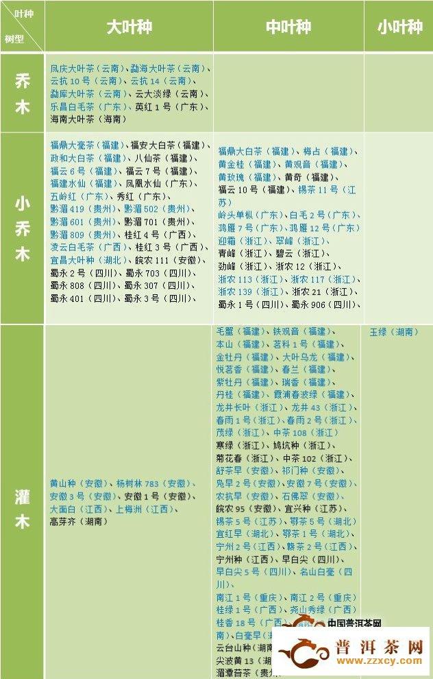 一张表了解国家级茶树良种的树型及叶种