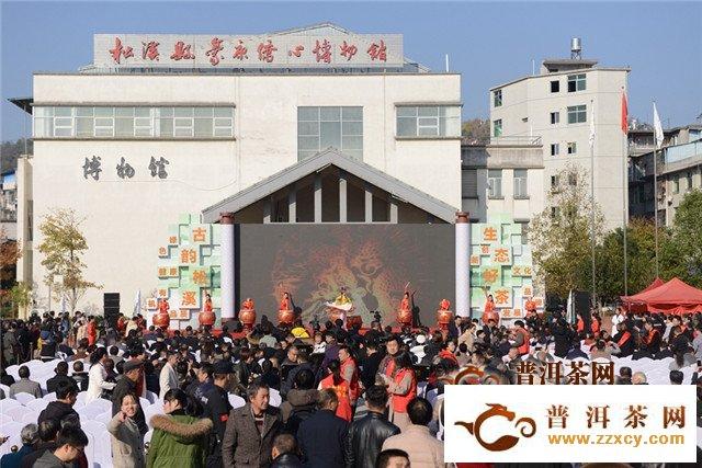 茶企专家学者齐聚福建松溪 共话茶商经济
